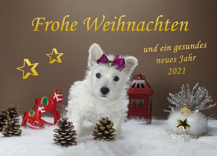 Weihnachstkarte mit Welpe