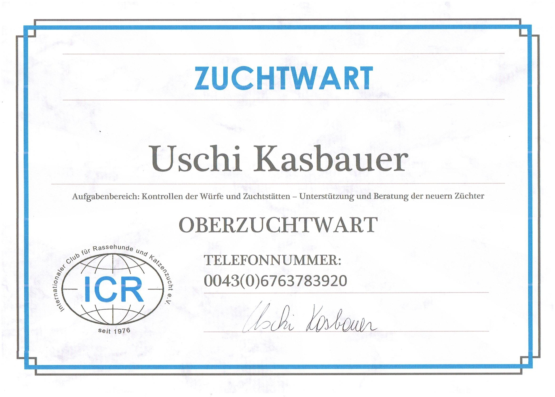 Vorwahl 431 deutschland | Vorwahl Telefon Kiel: 0431